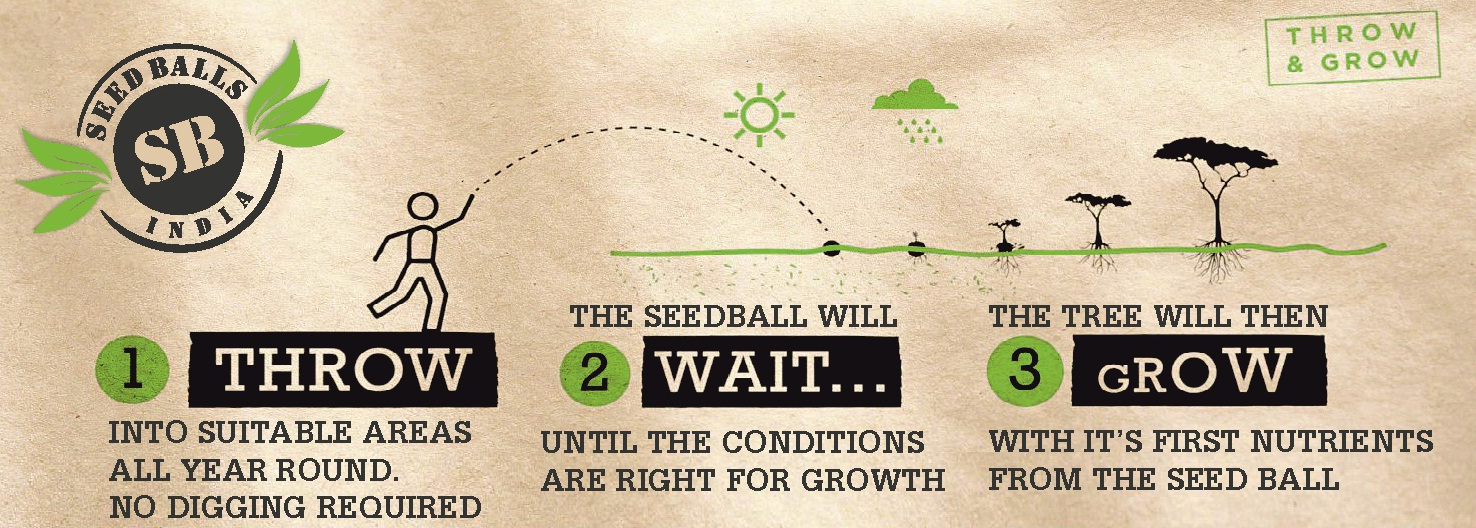 Seed Ball   Pioneer Agro Industries   Grow Bags Manufacturer